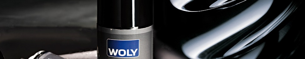 woly-shoe care banner